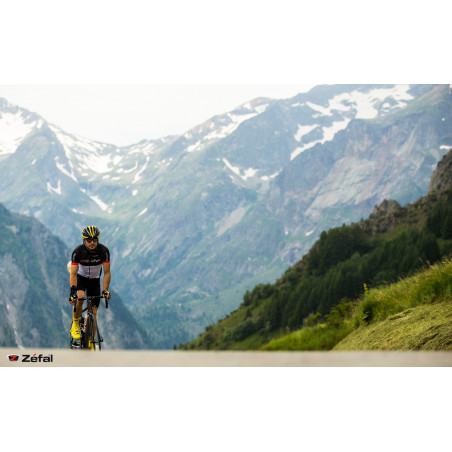 Alpes Road 3